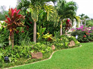 Kauai Estate Landscaping
