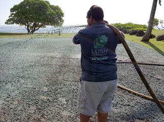 Kauai Hydro Mulch
