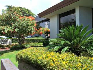 Resort Landscape Maintenance