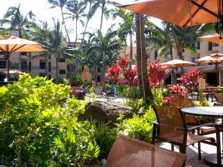 Resort Maintenance