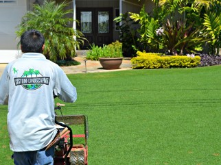 Lush Landscaping Lawn Care Service