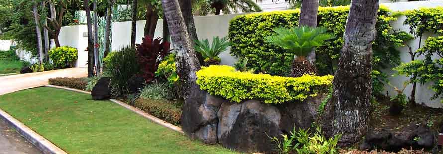 Kauai Landscape Design